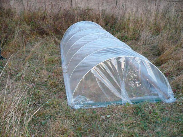 Как закрепить пленку на парнике из дуг чтобы не сорвало ветром
