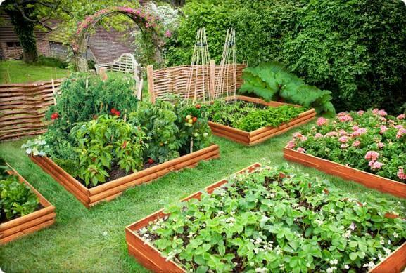 Обрамление грядок своими руками: советы садоводам