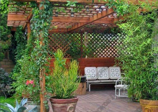 Внутренний дворик - укрытие от посторонних взглядов: советы садоводам