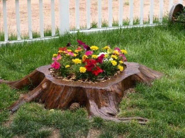 Украшаем пеньки. Советы профессионалов: как украсить пень в саду своими руками