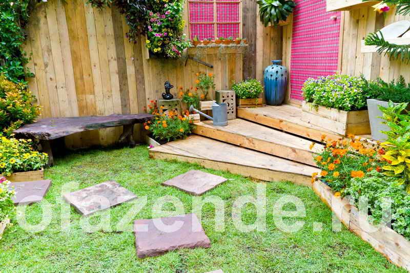 Садовая живность вокруг дома: советы садоводам