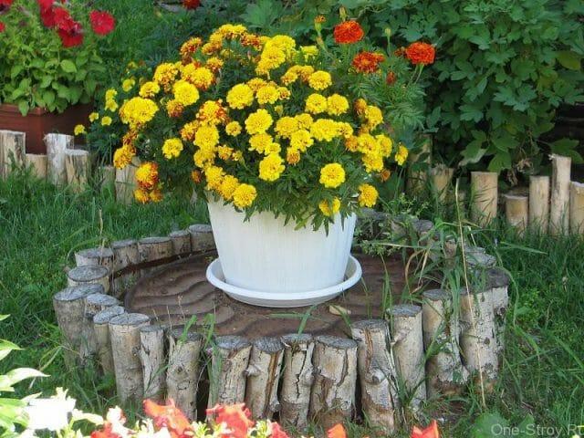 Маскировка неприглядных элементов в саду: советы садоводам