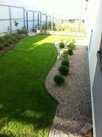 Озеленение отмостки дома: советы садоводам