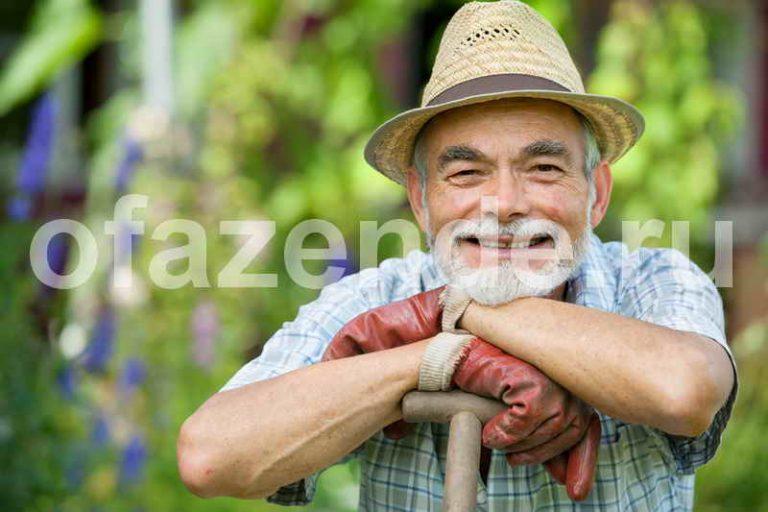 Календарь обработки сада от вредителей