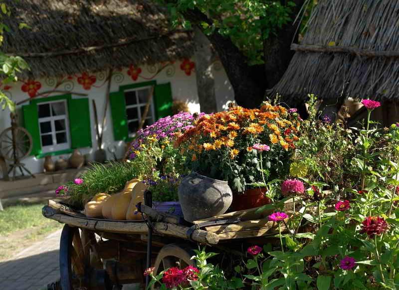 его дизайн деревенского двора фото можете купить