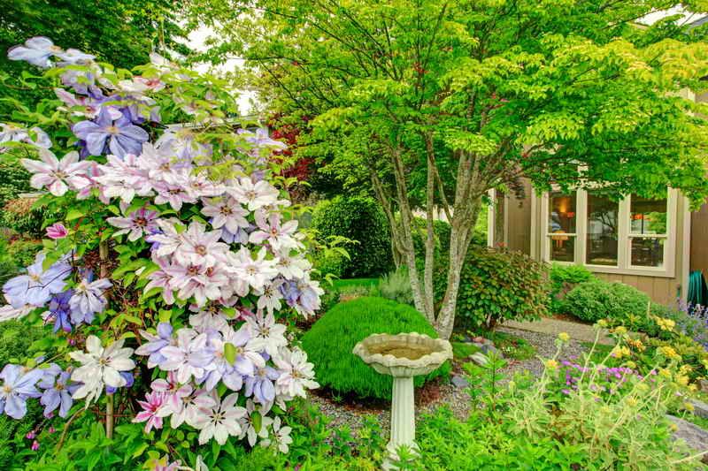 Внутренний дворик - место уединения: советы садоводам