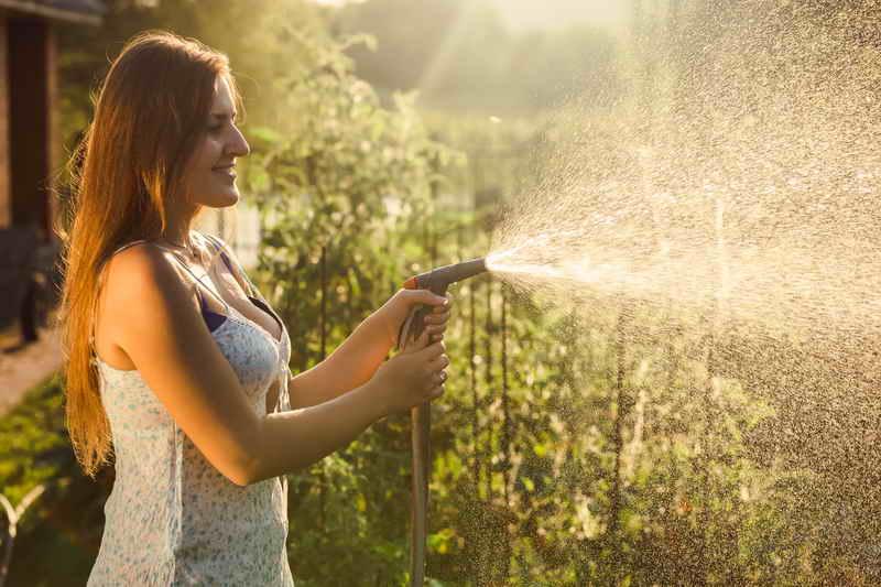 Капризы учтите – урожай получите! Советы по выращиванию перца