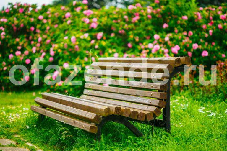 Цветники вокруг скамейки