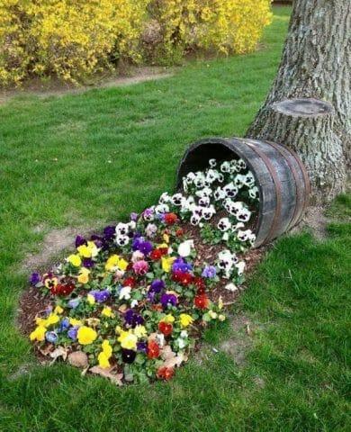 Вторая жизнь старого цветника: советы садоводам