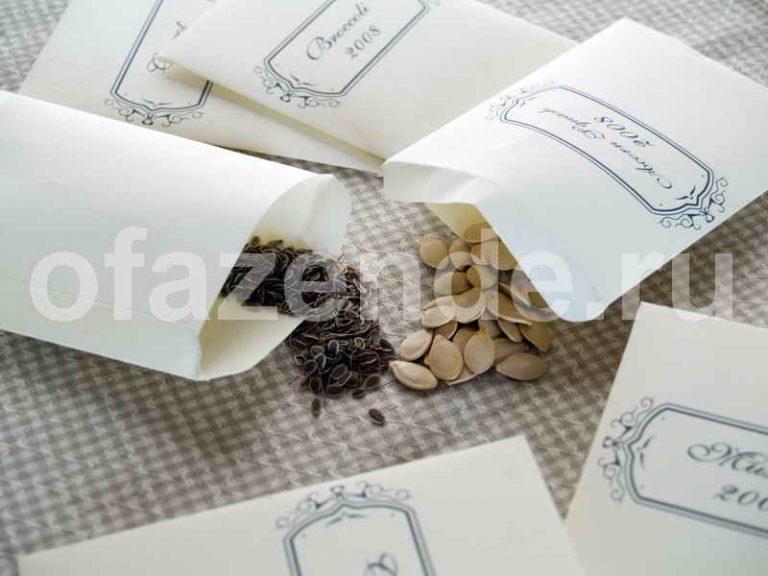 Способы обеззараживания семян без применения химии