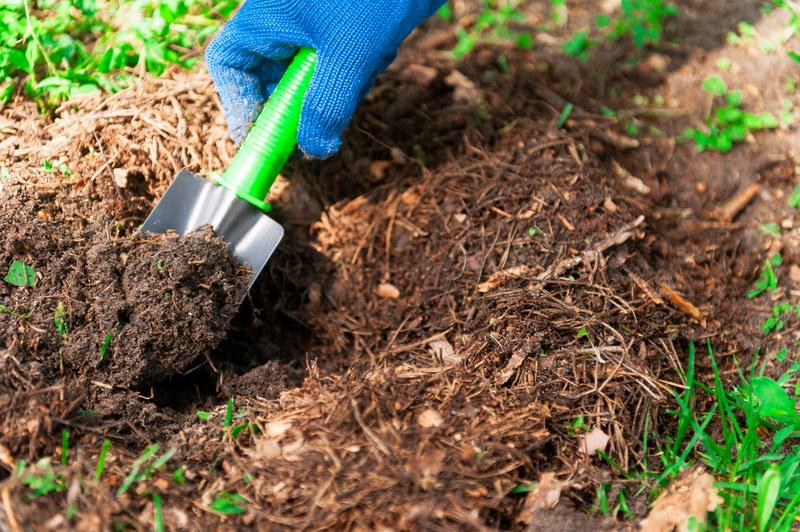 Как улучшить песчаную и глинистую почву