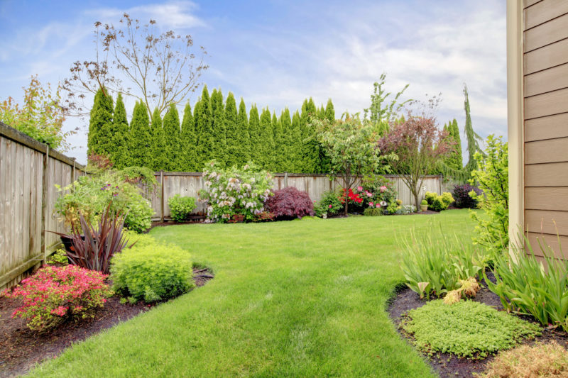 Распространенные ошибки в дизайне сада