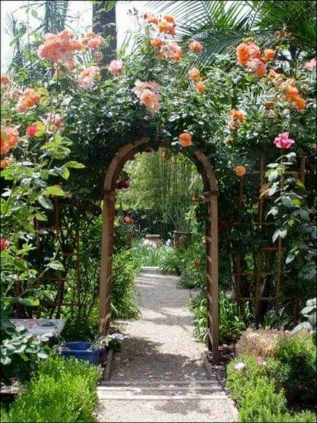 Арки, увитые розами в саду: советы садоводам