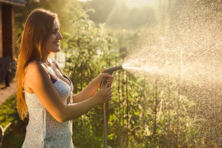 Сахар в огороде - мой верный помощник: как и для чего он нужен?