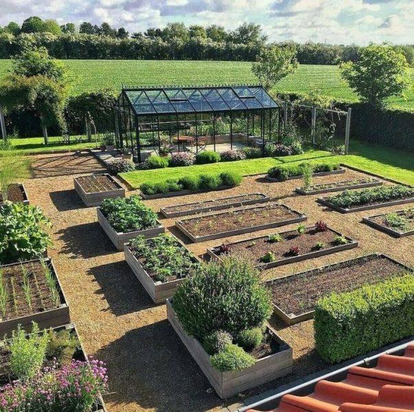 8 полезных советов для садоводов и огородников, которые упростят труд и помогут увеличить урожай