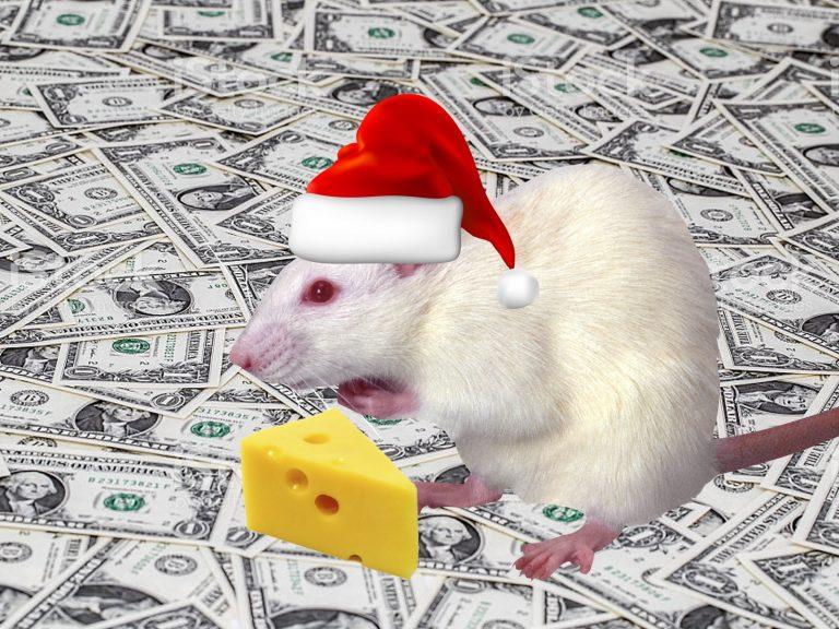 Любимчики металлической Крысы 🐀: каким знакам Зодиака невероятно повезёт в 2020 году