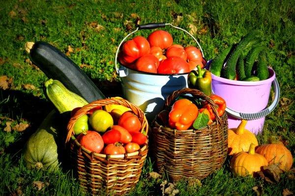 7 способов сохранить урожай на долгое время