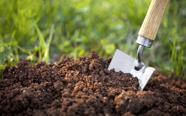 Готовимся к сезону: что нужно сделать весной в огороде