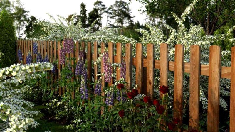 С чего начать весенние работы в саду и огороде: 5 этапов