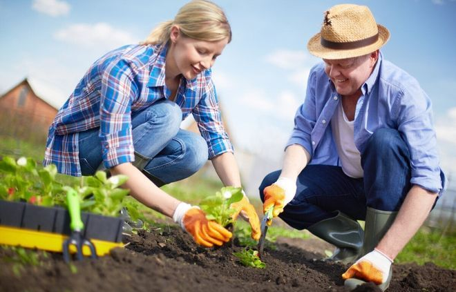Мужчина и женщина работают в огороде
