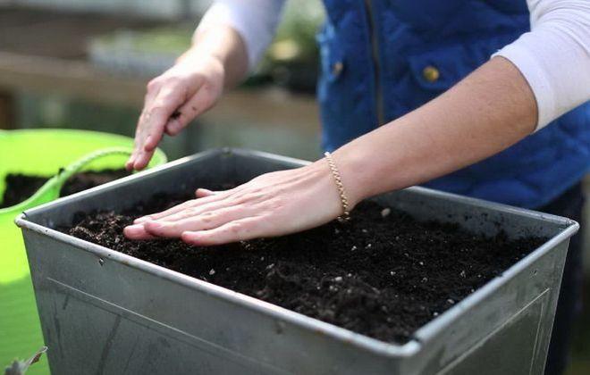 Приготовление земли для рассады