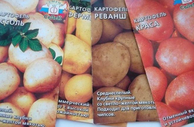 Семена картофеля нескольких сортов