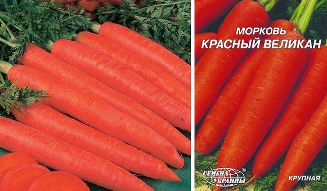 """Морковь """"Красный великан"""""""