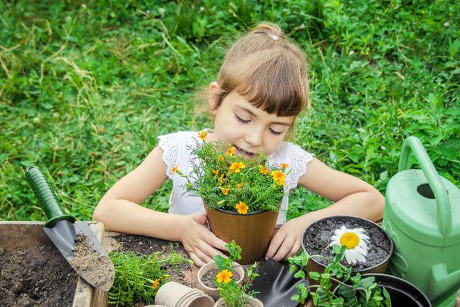 Маленькая девочка высаживает цветы