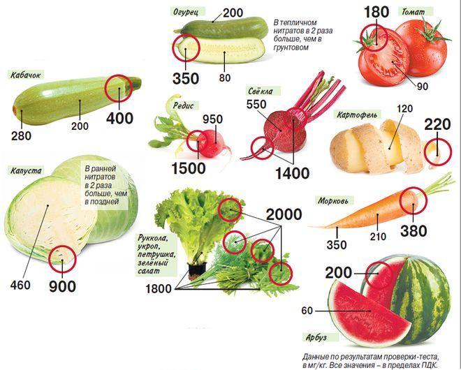 Где в овощах накапливаются нитраты