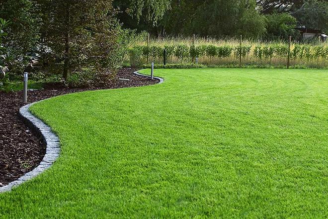 Как сделать идеальный газон