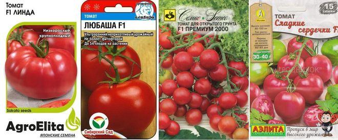 Скороспелые низкорослые помидоры