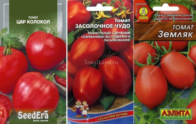 Сорта низкорослых томатов для средней полосы