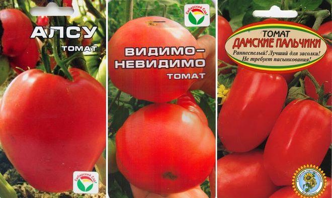 Сорта низкорослых помидор