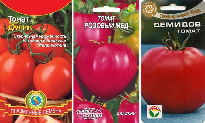 Урожайные сорта низкорослых помидоров