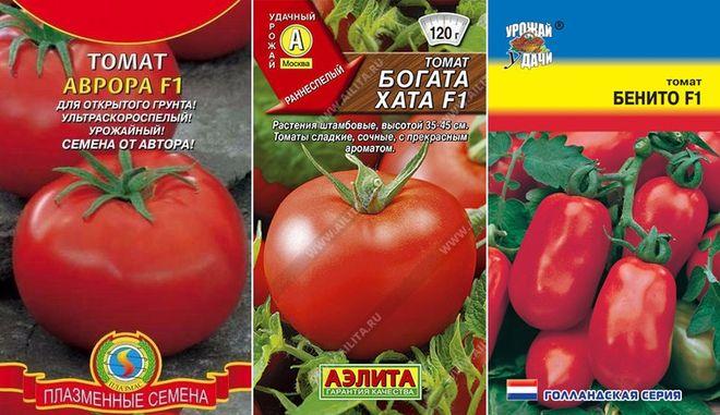Сорта помидоров низкорослых