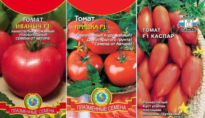 Скороспелые низкорослые томаты