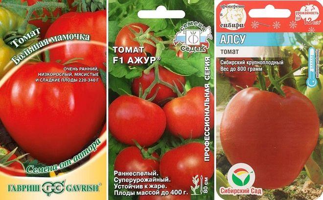 Крупноплодные сорта низкорослых томатов
