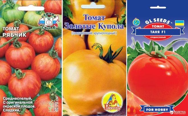 Высокоурожайные низкорослые томаты