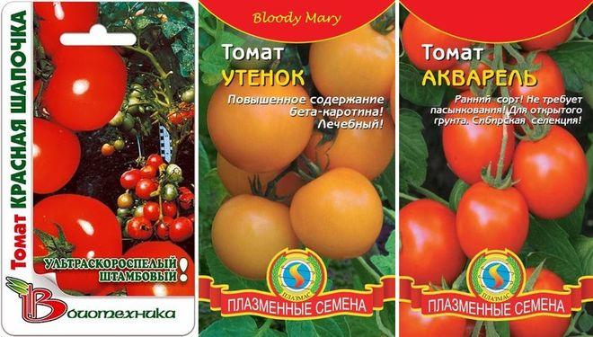 Сорта низкорослых помидоров без пасынкования