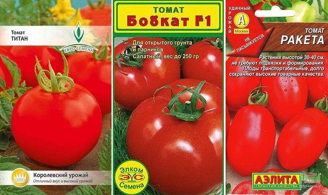 Поздник сорта низкорослых помидоров