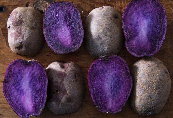 Картошка с фиолетовой мякотью