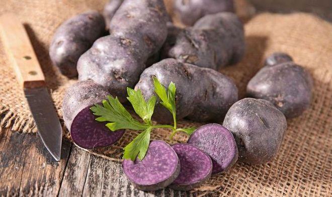 Фиолетовый картофель Взрыв (Explosion)