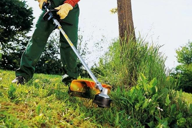 Покос травы в саду