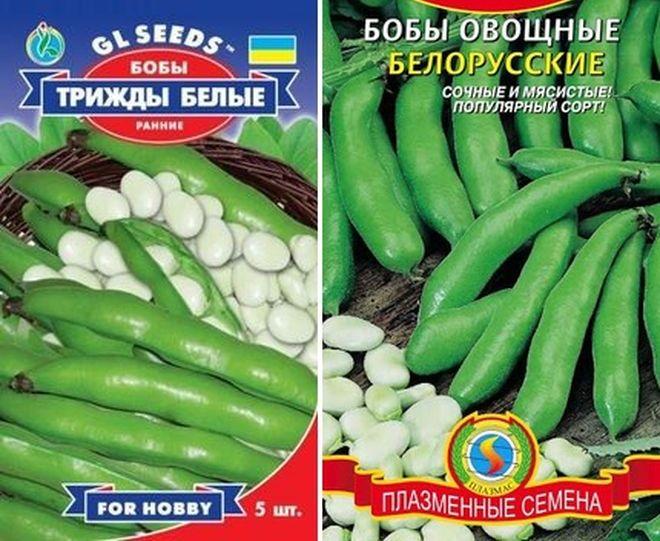 Сорта бобов