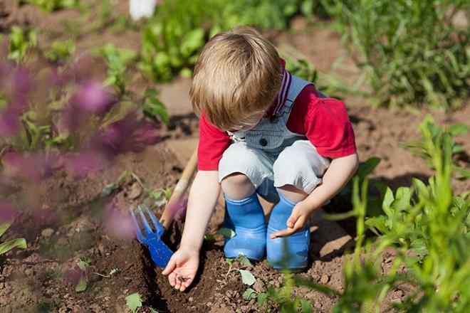 Ребенок на огороде