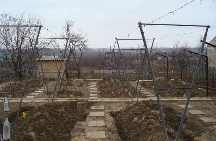 Г-образные подпорки для винограда