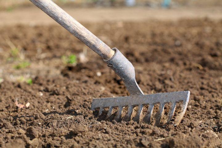 Боронование почвы