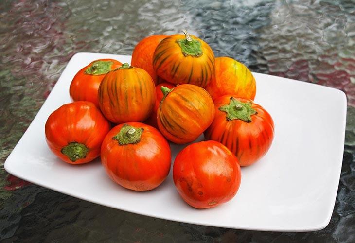 Баклажан Турецкий Оранжевый