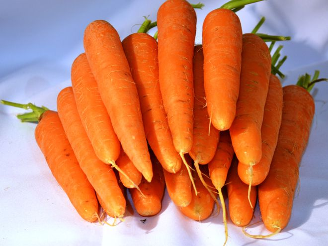 Морковь Колорит