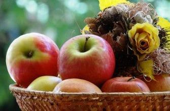 7 самых сладких сортов яблок